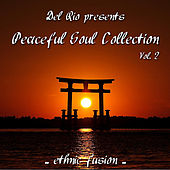 Play & Download Peaceful Soul Collection, Vol. 2  (Ethnic Fusion) by Del Rio | Napster