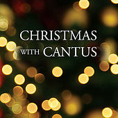 Play & Download Christmas with Cantus by Cantus | Napster