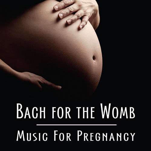 Bach for the Womb (Music For Pregnancy) by Various Artists