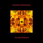 Play & Download The Spirit Molecule by Anomalous Disturbances | Napster