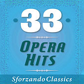 33 - Opera Hits by Various Artists