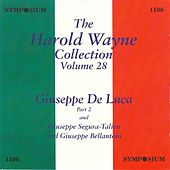 The Harold Wayne Collection, Vol. 28 (1907, 1910) by Various Artists