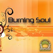 Burning Soul, Vol.1 by Various Artists