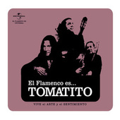 Flamenco es...Tomatito by Tomatito