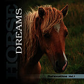 Play & Download HORSE DREAMS - Relaxing Music for Horses & Horse Lovers by Marco Missinato | Napster