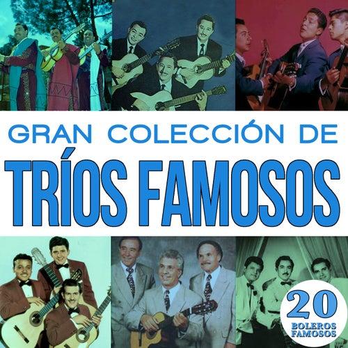 Gran Colección de Trios Famosos 20 Boleros Famosos Vol.3 by Various Artists