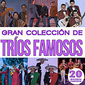 Gran Colección de Trios Famosos Boleros Famosos Vol.5 by Various Artists