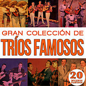 Play & Download Gran Colección Trios Famosos 20 Boleros Famosos Vol.1 by Various Artists | Napster