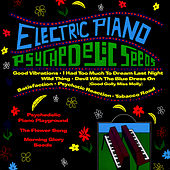 Psychedelic Seeds by Electric Piano Playground