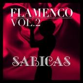Flamenco: Sabicas Vol.2 by Sabicas