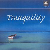Play & Download Tranquility by Various Artists | Napster