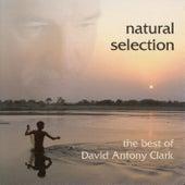 Clark, David Antony: Natural Selection by David Antony Clark
