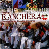 Play & Download Antología Ranchera Grandes Voces, Grandes Canciones Volume 3 by Cuco Sanchez | Napster