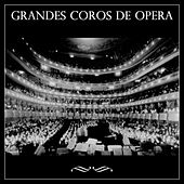 Play & Download Grandes Coros de Ópera by Various Artists | Napster
