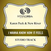 Play & Download I Wanna Know How It Feels (Studio Track) by Karen Peck & New River | Napster
