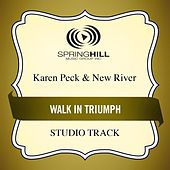 Walk in Triumph (Studio Track) by Karen Peck & New River