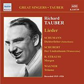 Tauber, Richard: Lieder (1919-1926) by Various Artists