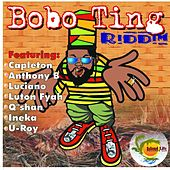 Bobo Ting Riddim by Various Artists