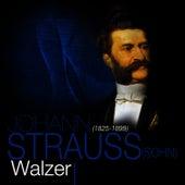 Johann Strauss (Sohn): Walzer by Das Große Klassik Orchester