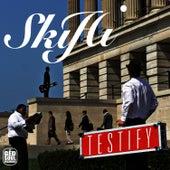 Testify by SkyHi
