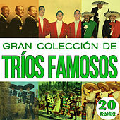 Play & Download Gran Colección de Trios Famosos 20 Boleros Famosos. Vol.2 by Various Artists | Napster