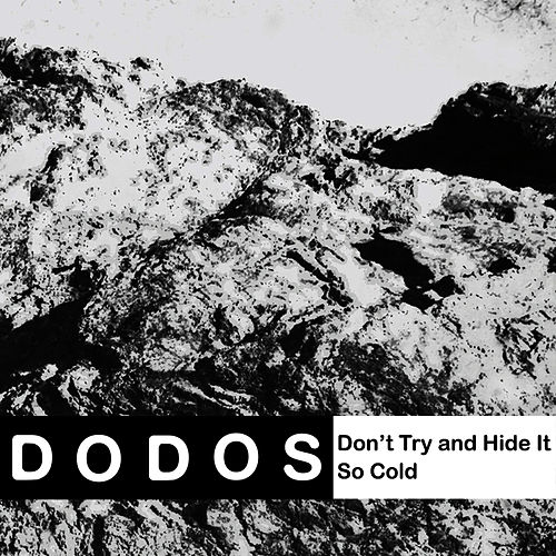 Don't Try and Hide It by The Dodos