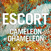 Play & Download Caméleon Chameleon by Escort | Napster