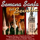 Play & Download Semana Santa en Sevilla by Various Artists | Napster