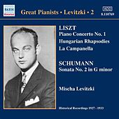 Levitski, Mischa: Complete Recordings, Vol. 2 (1927-1933) by Various Artists