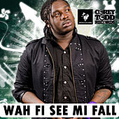 Wah Fi See Mi Fall by Jah Vinci
