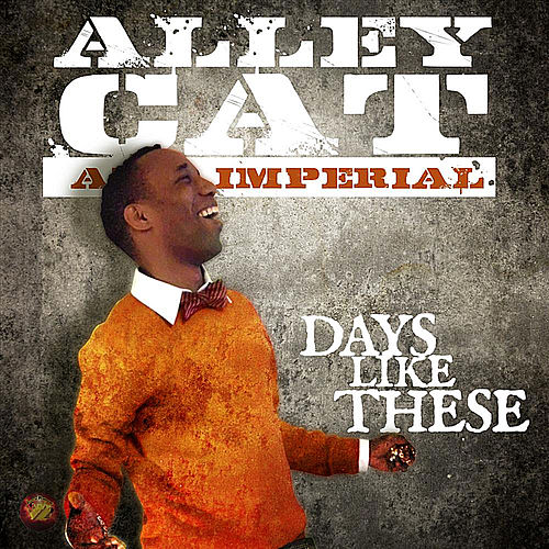 Days Like These von Alley Cat