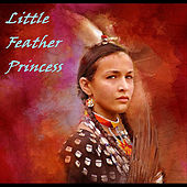 Play & Download Little Feather Princess by Tiger Room | Napster