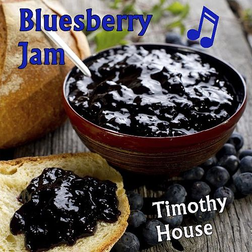 Bluesberry Jam - Single by Timothy House