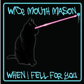 When I Fell For You - Single by Wide Mouth Mason