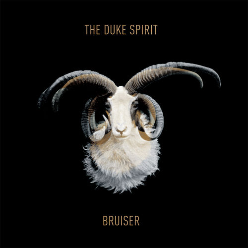 Play & Download Bruiser by The Duke Spirit | Napster