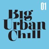 Big Urban Chill Vol. 1 von Various Artists