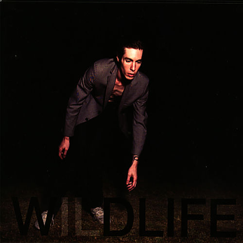 Play & Download Wildlife by The Icarus Line | Napster