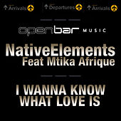Play & Download I Wanna Know What love Is by Native Elements | Napster