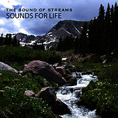 Sound of Streams by Sounds for Life