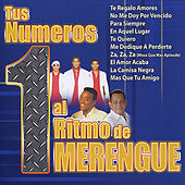 Play & Download Tus Numeros 1 al Ritmo de Merengue by Various Artists | Napster