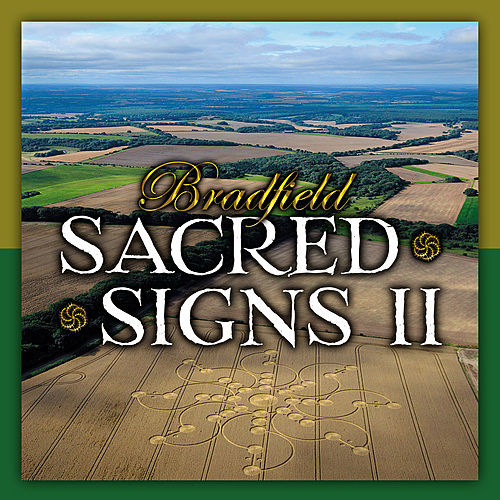 Sacred Signs II by Bradfield
