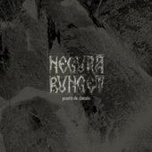 Play & Download Poarta de Dincolo by Negura Bunget | Napster