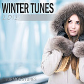 Winter Tunes 2012 by Various Artists