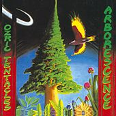 Play & Download Arborescence by Ozric Tentacles | Napster