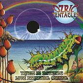 Play & Download There Is Nothing/Live Ethereal Cereal by Ozric Tentacles | Napster