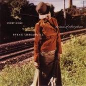 Sweet Home: Pyeng Threadgill Sings Robert Johnson by Pyeng Threadgill