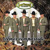 Play & Download Amor Compartido by Los Tucanes de Tijuana | Napster
