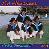 Play & Download Arriba Durango!!! by Los Alacranes De Durango | Napster