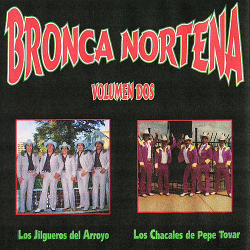 Bronca Nortena, Vol. 2 by Various Artists