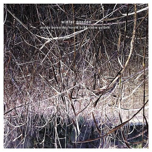 Winter Garden by Eraldo Bernocchi